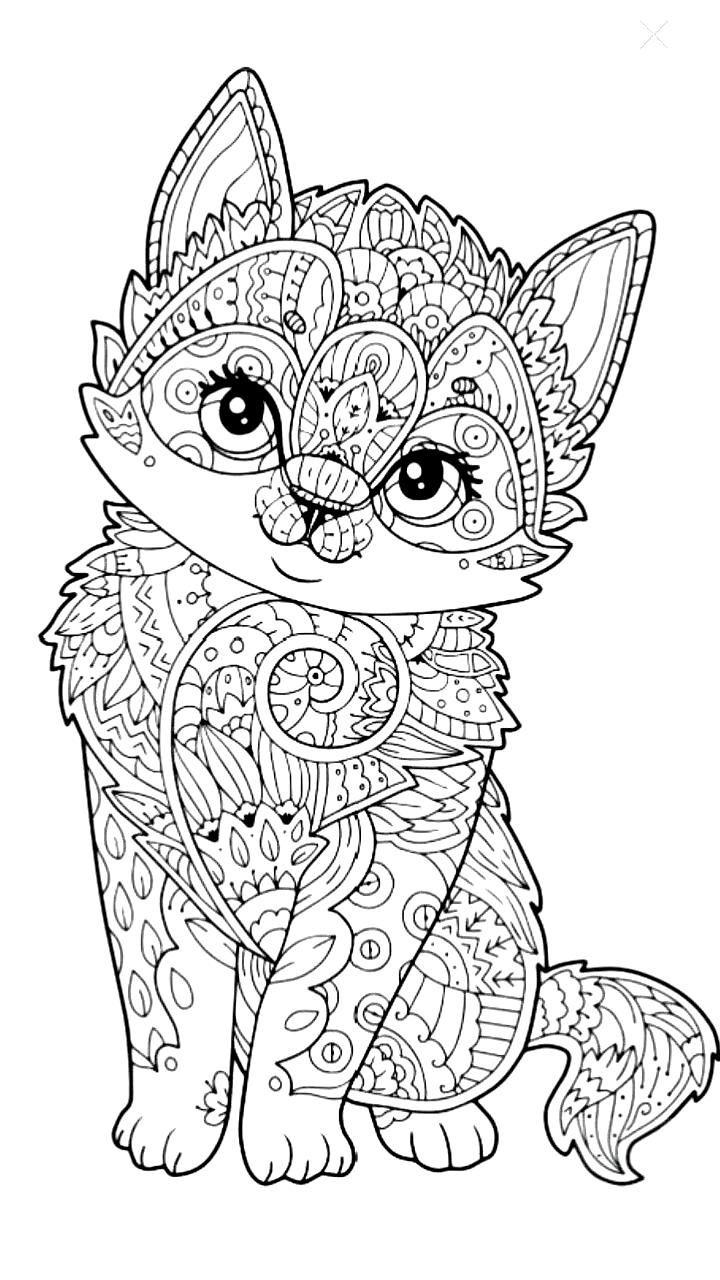 Mandala Mandala Boyama Mandala Calismasi Mandala Desenleri Mandalas Dibujos Mandala Art Mandal In 2020 Cat Coloring Page Cartoon Coloring Pages Mandala Coloring Pages