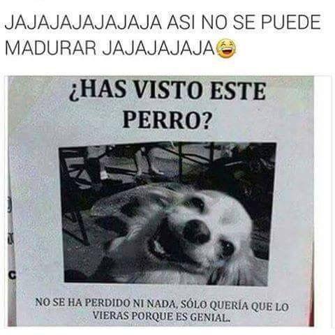 Pin De Heydie N A En Funny Memes Memes Espanol Graciosos Memes Chistosisimos