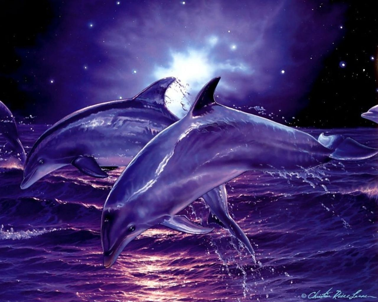 Wallpaper Delphine springen über die Wellen des Meeres | pc ...
