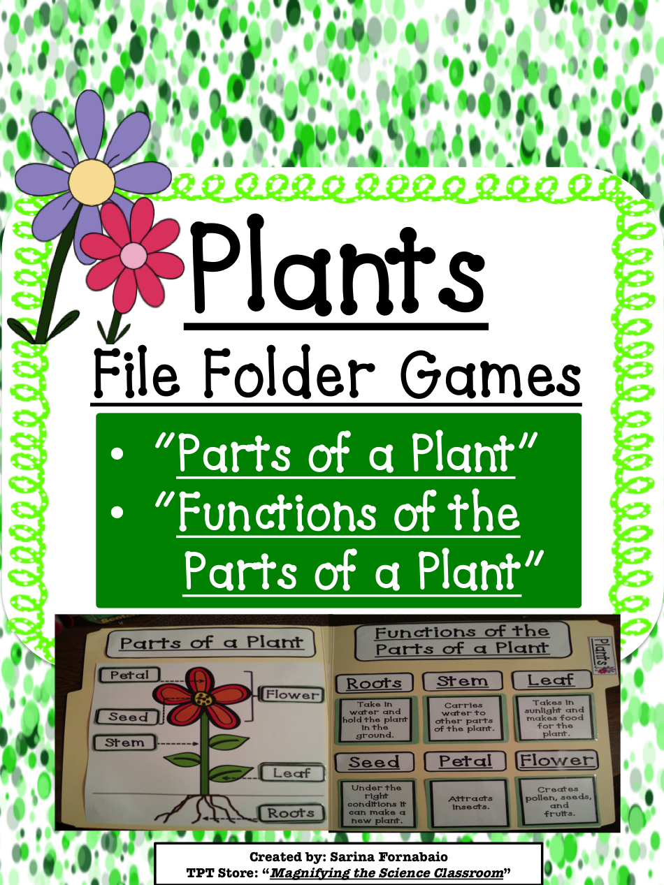 Plants Sorting, Labeling, and Matching File Folder Games
