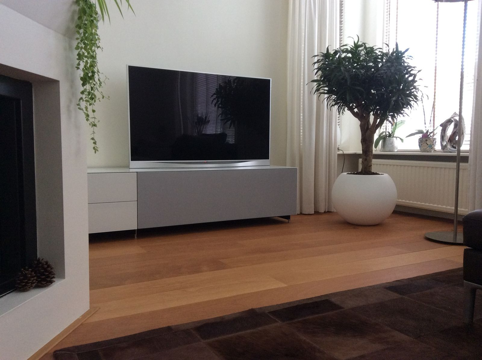 Spectral Cocoon spectral cocoon co1002 interieur