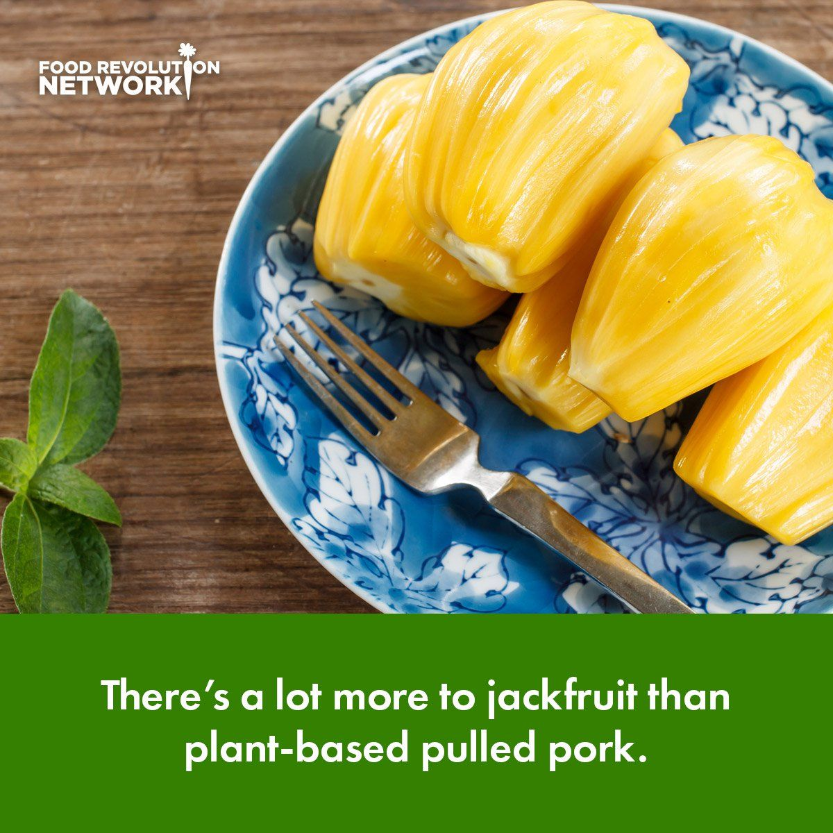 What Is Jackfruit Everything You Need To Know About This Odd Yet Nutritious And Sustainable