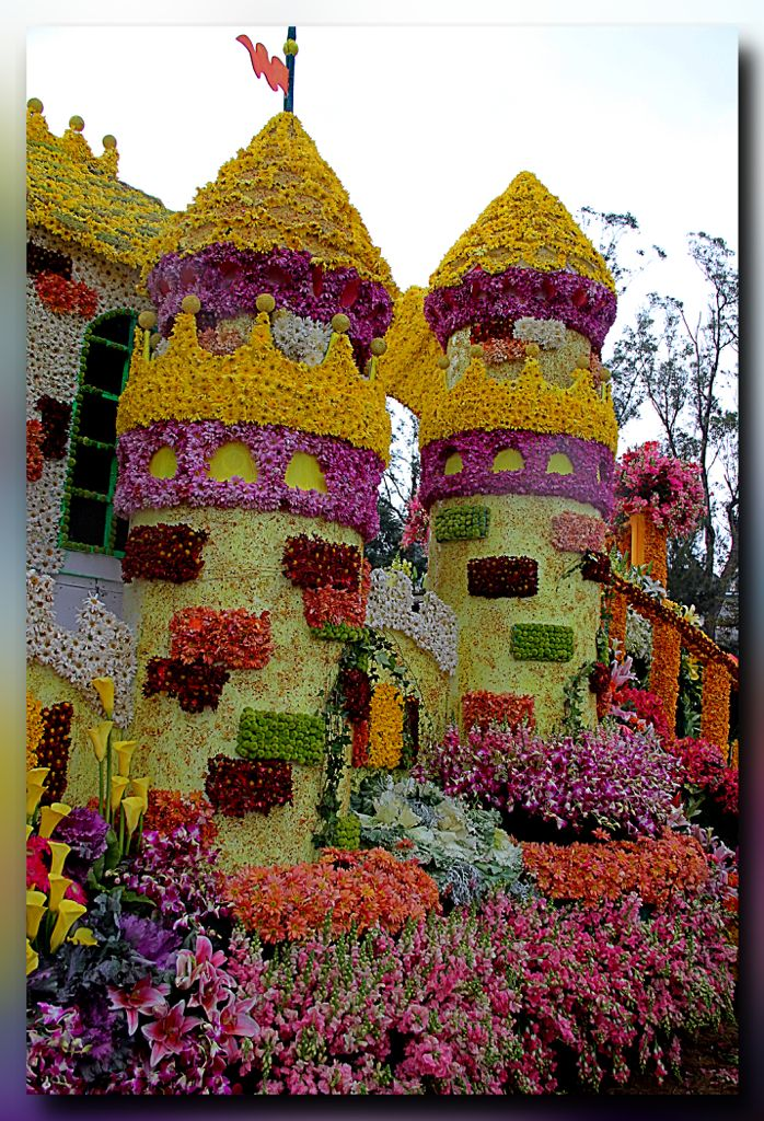 Flower Float Parade Flower Festival Flower Sculptures Annual Flowers