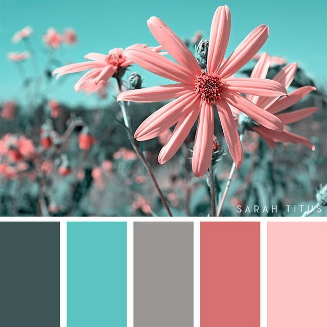 25 Summer Color Palettes (Sarah Titus ~ Saving Money Never Goes Out of Style)
