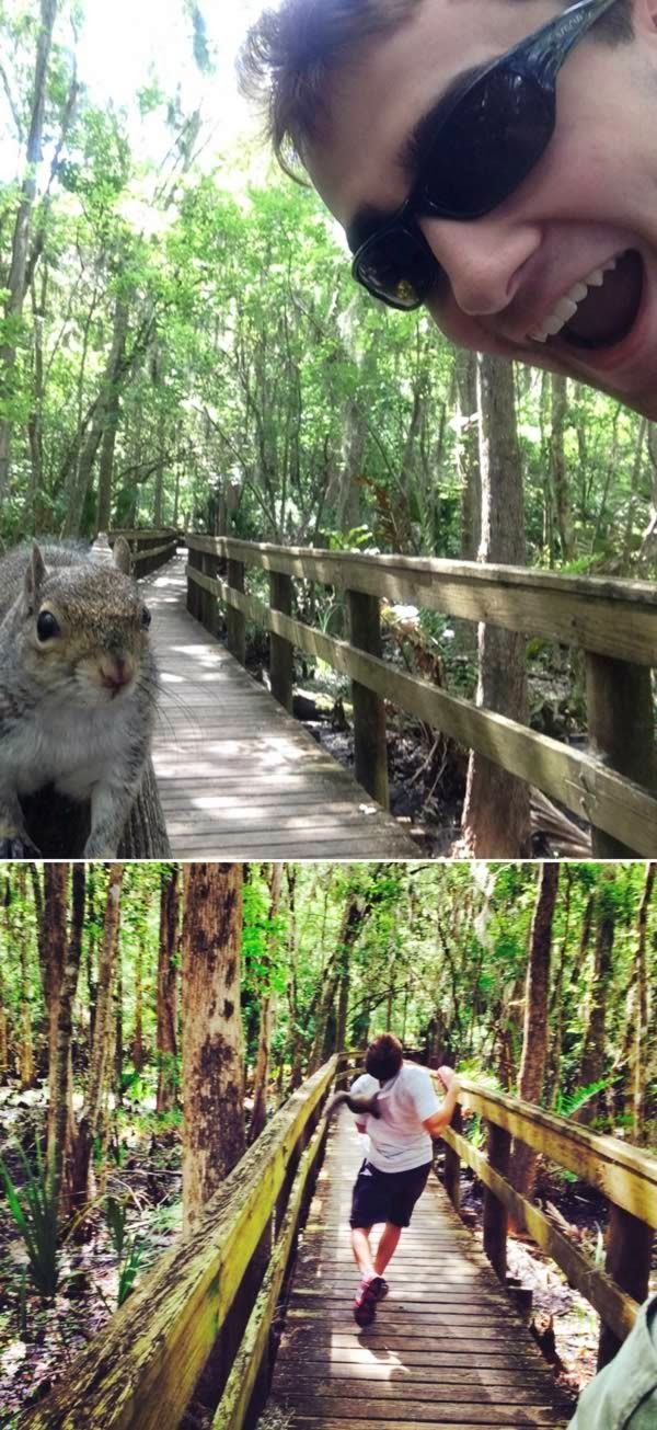 The squirrel who went nuts on teenager attempting to take a selfie