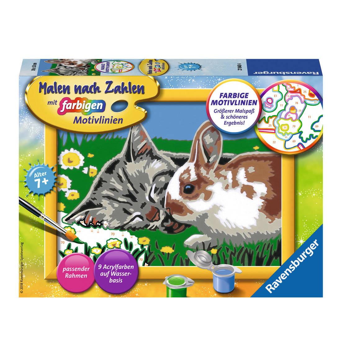 Katzchen Und Haschen Katzen Malen Nach Zahlen Und Perfektes Bild