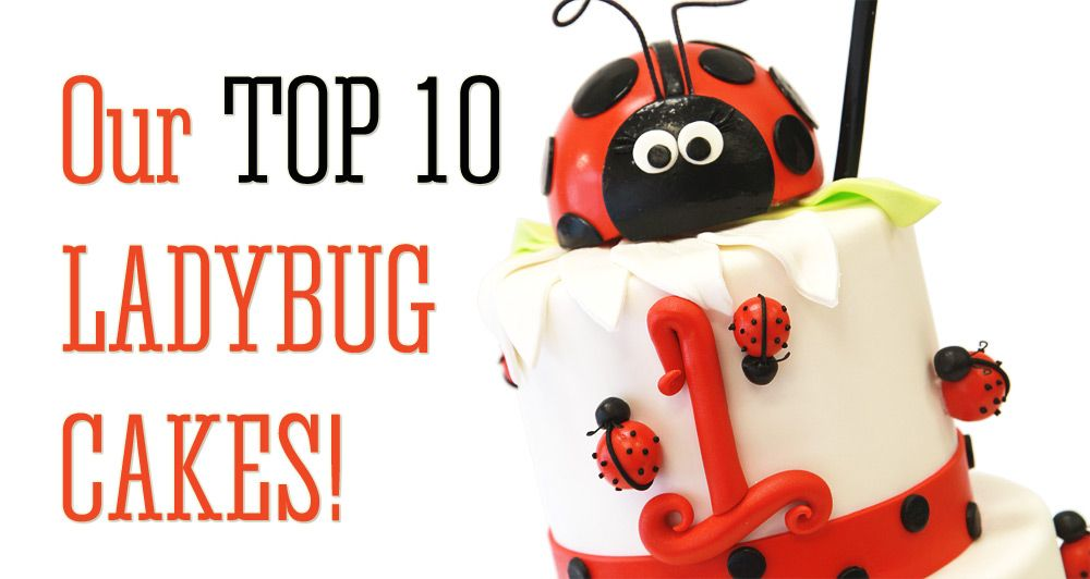 Looking for a ladybug themed cake for your child's next birthday? Then we have your ladybug fix! Check out our top 10 ladybug themed cakes, cookies & cupcakes!