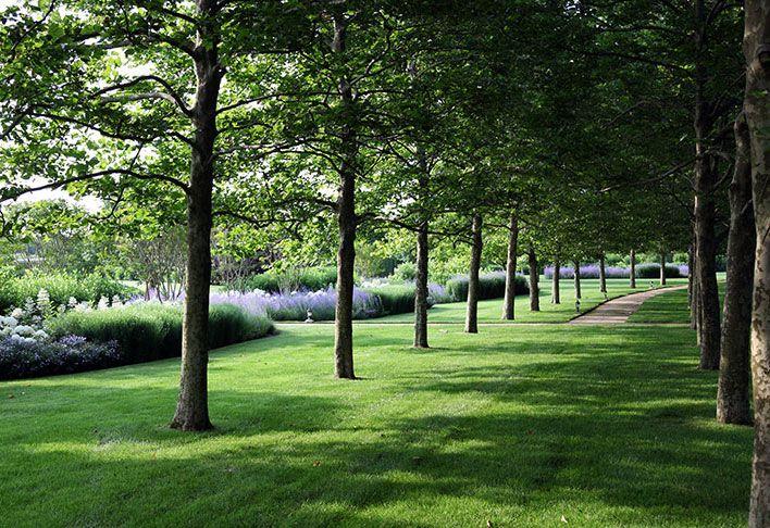 Landscaping | Whitmores Landscape Service