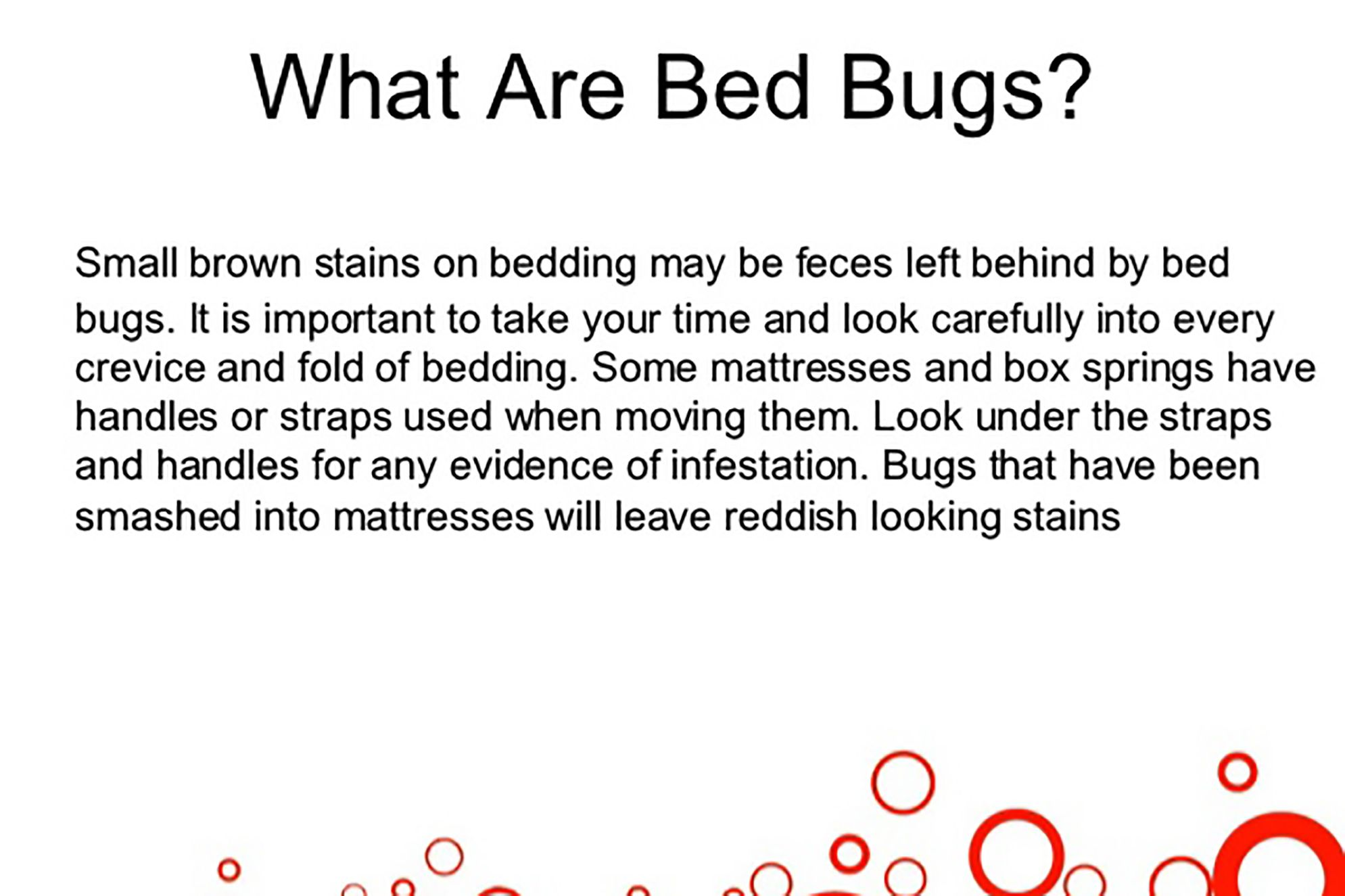 bedbugs killbedbugs Bed bugs, Kill bed bugs, Box spring