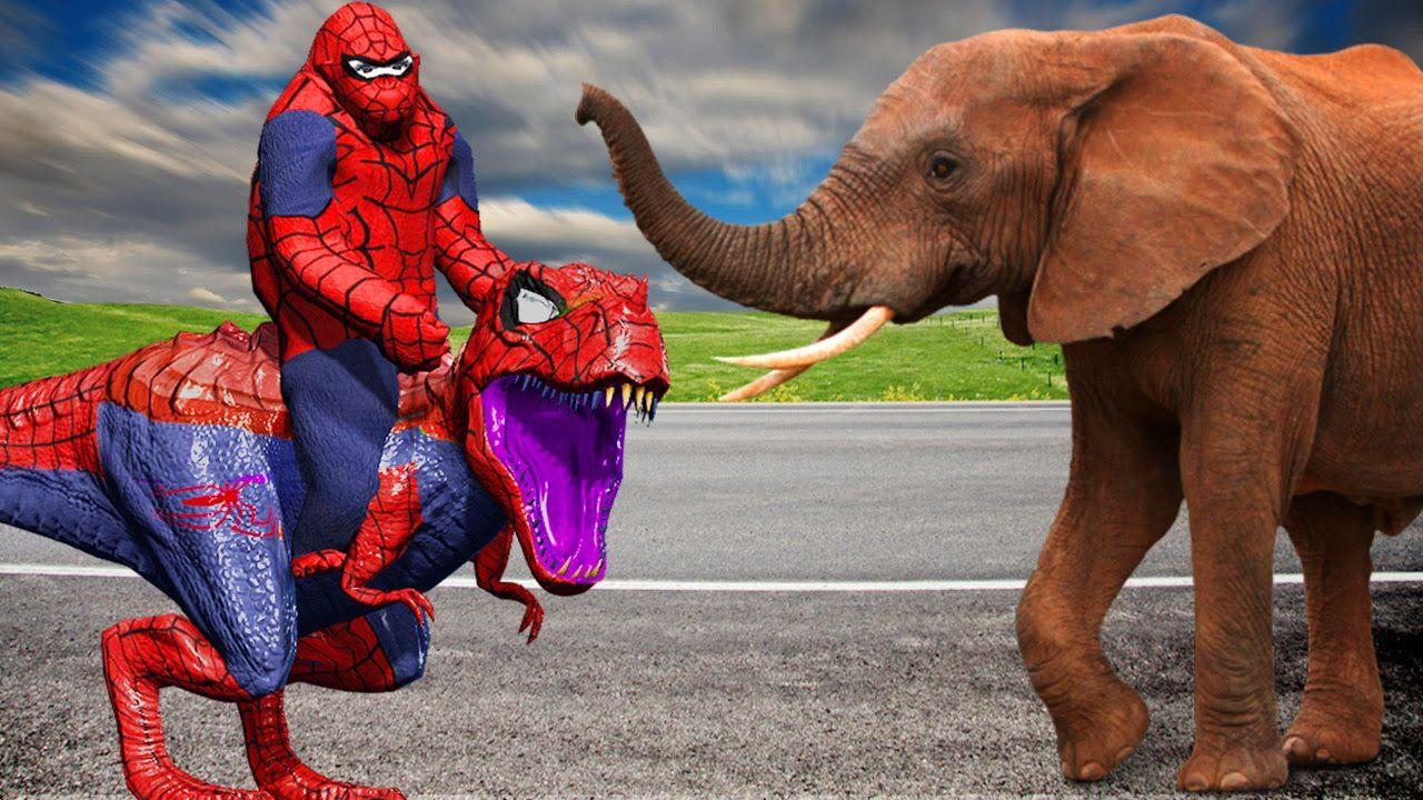Spiderman Gorilla Vs Dinosaur Fight Lion Bear Tiger