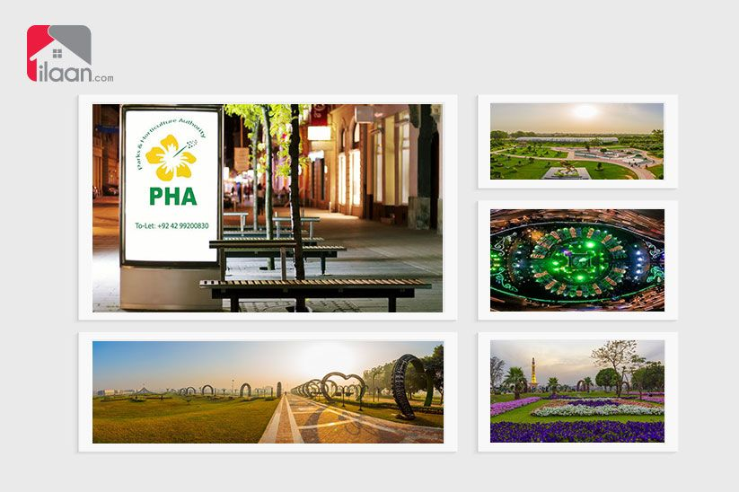 Increase In Public Park Fees For Private Gatherings And Photography By Pha Park Public Park Photography