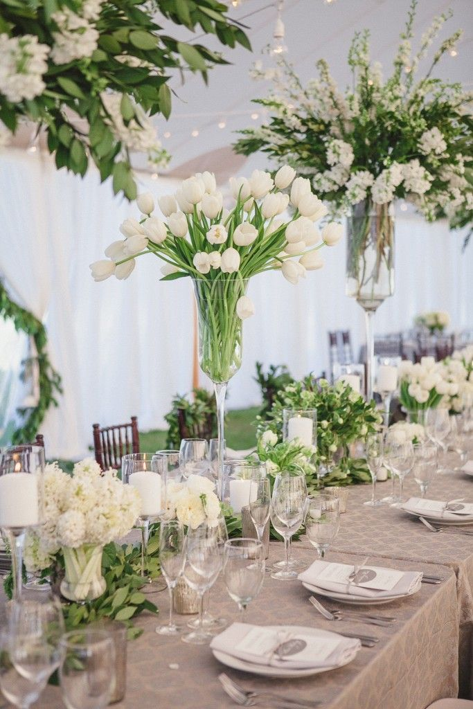 Tulips as center piece white a green charleston wedding floral tulips as center piece white a green charleston wedding floral pinterest weddings centerpieces and wedding junglespirit Choice Image