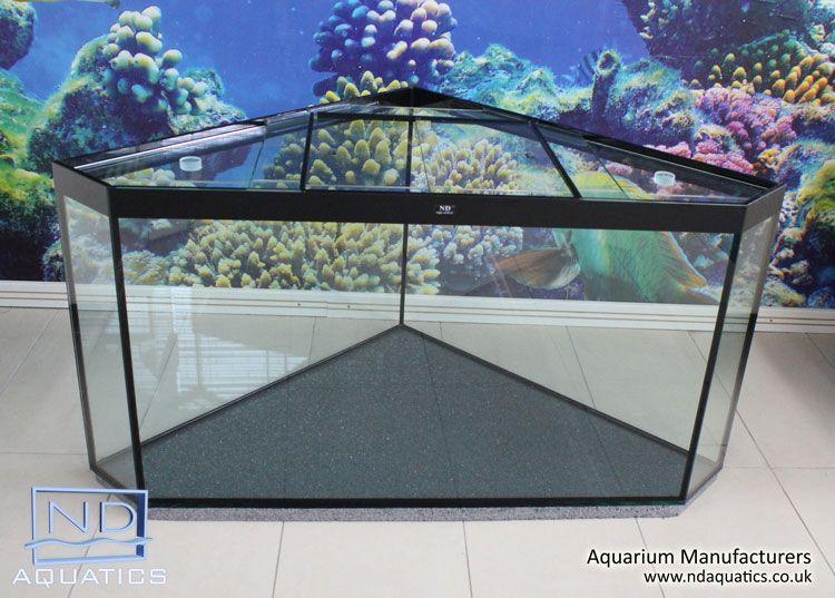 Custom Corner Tank Made By Nd Aquatics Ltd Www Ndaquatics Co Uk Fish Tank Marine Fish Tanks Marine Tank