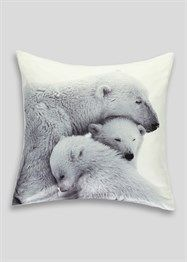 43 x 43 Cm Mono Divine By Design Fox Photographic Print Cushion Cover