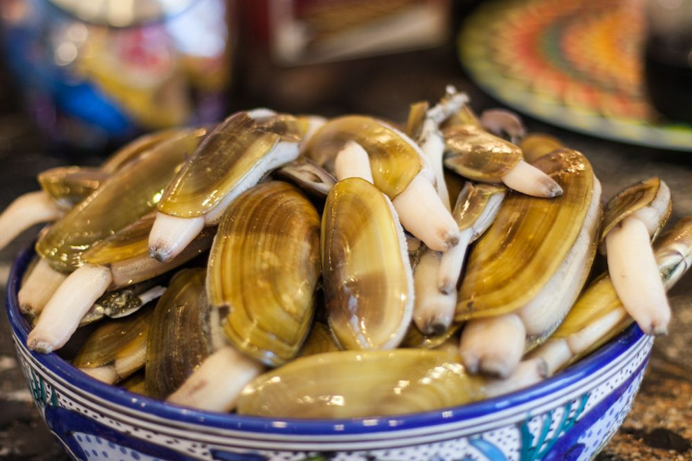 Razor Clams! Part 2 Cleaning and Storing Clams, How to