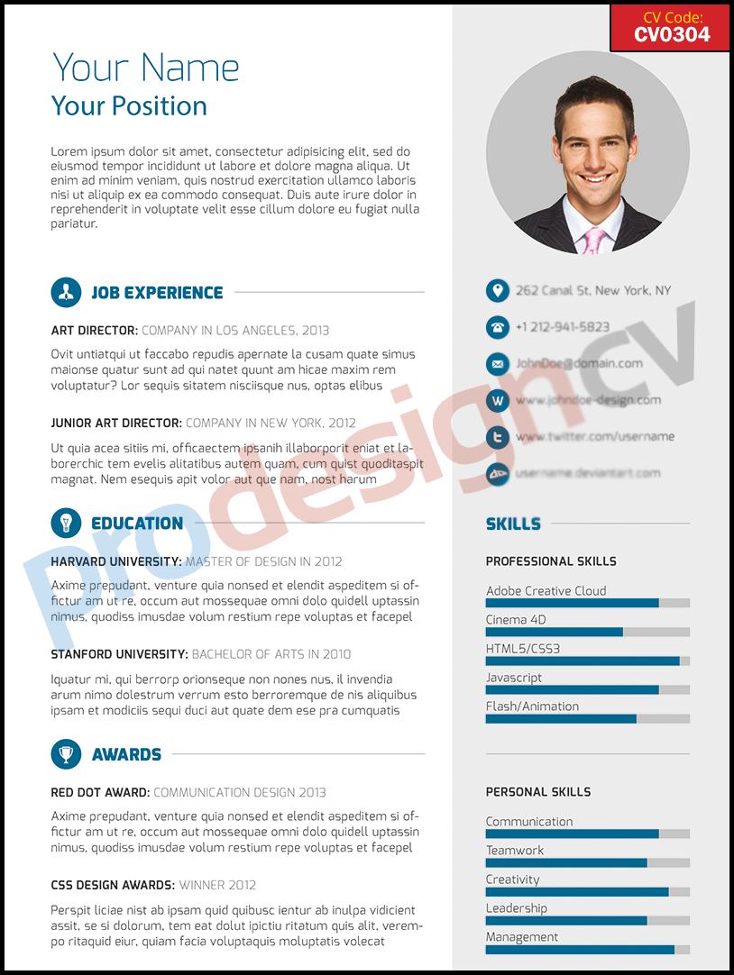 Professional Cv  Cv  Resume Examples
