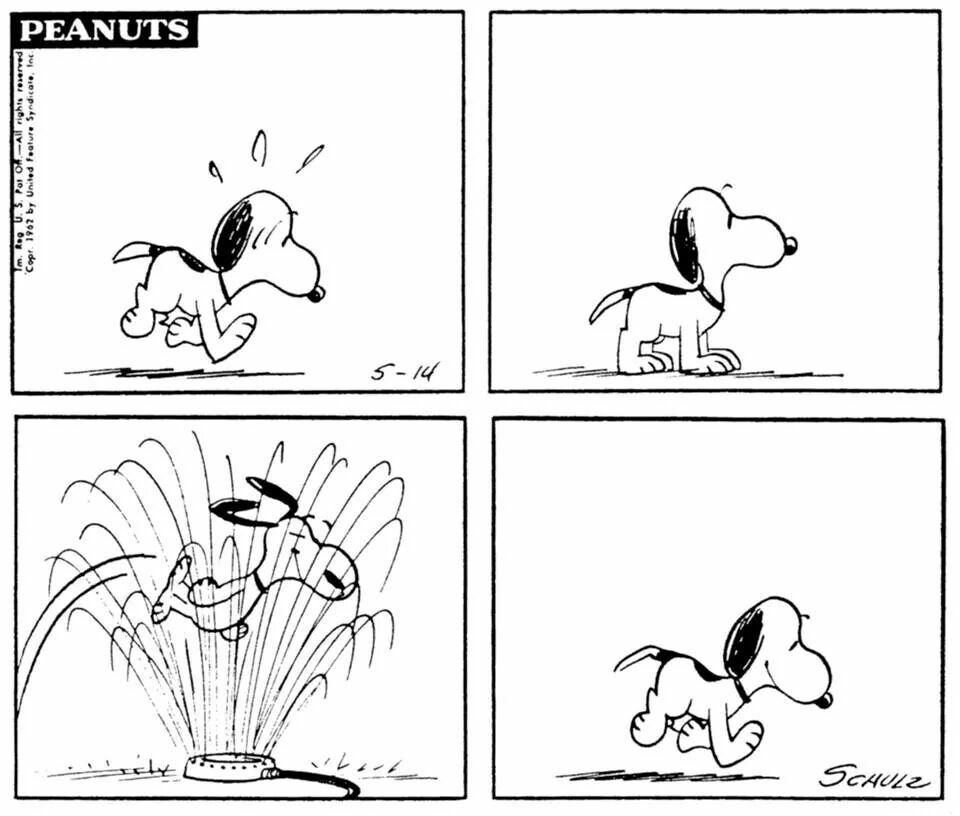 May 14, 1962 strip