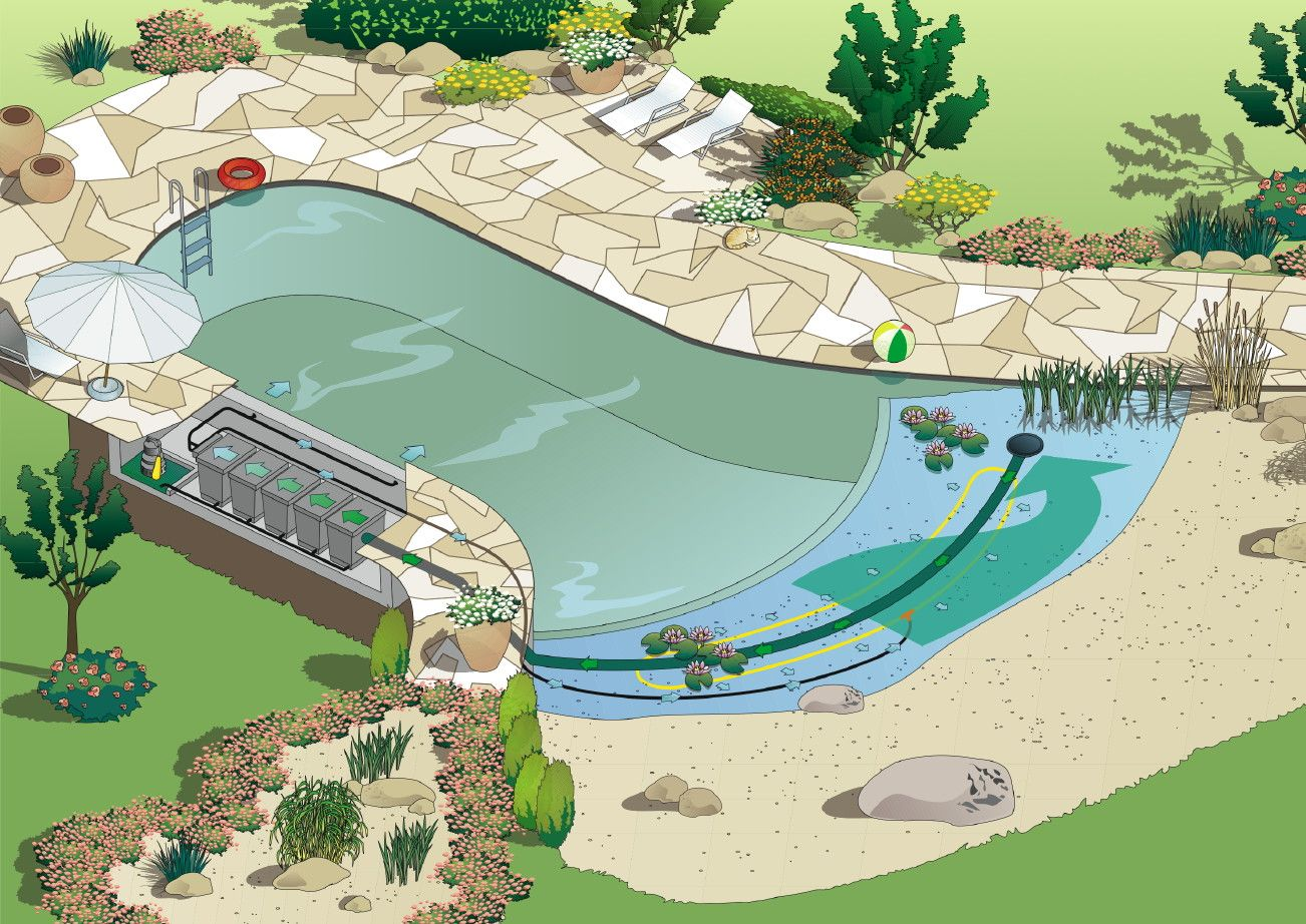 Pin by jamie willett on outdoors natural swimming pools for Garden pond plumbing design