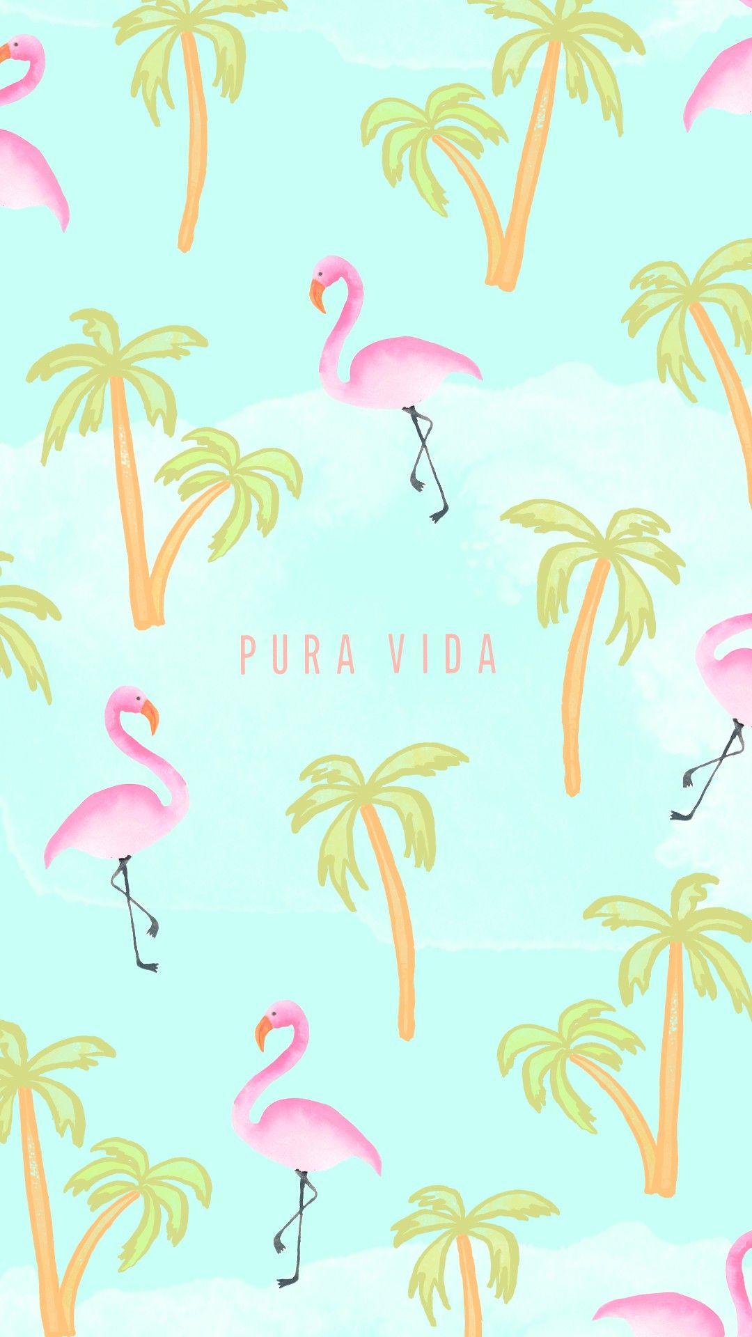 Flamingo Pattern Cute tumblr wallpaper, New wallpaper