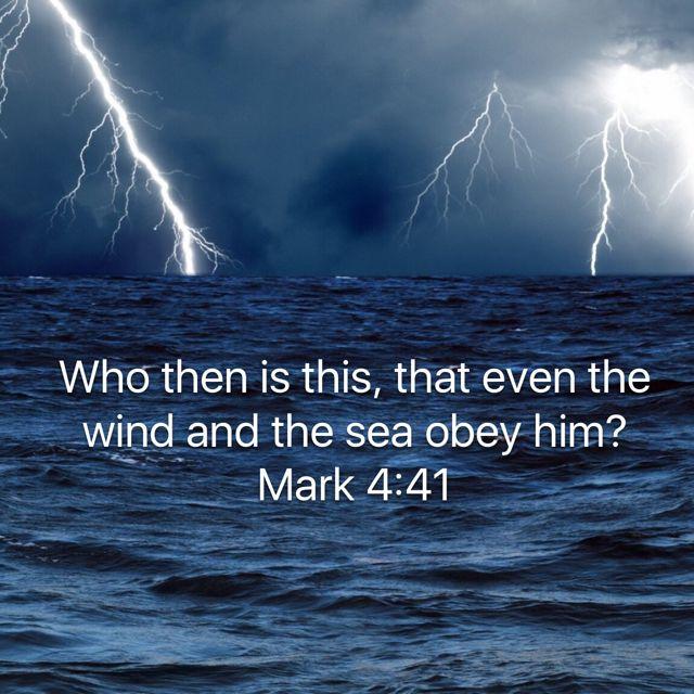 Mark 4:41 | Bible apps, Bible, Great fear