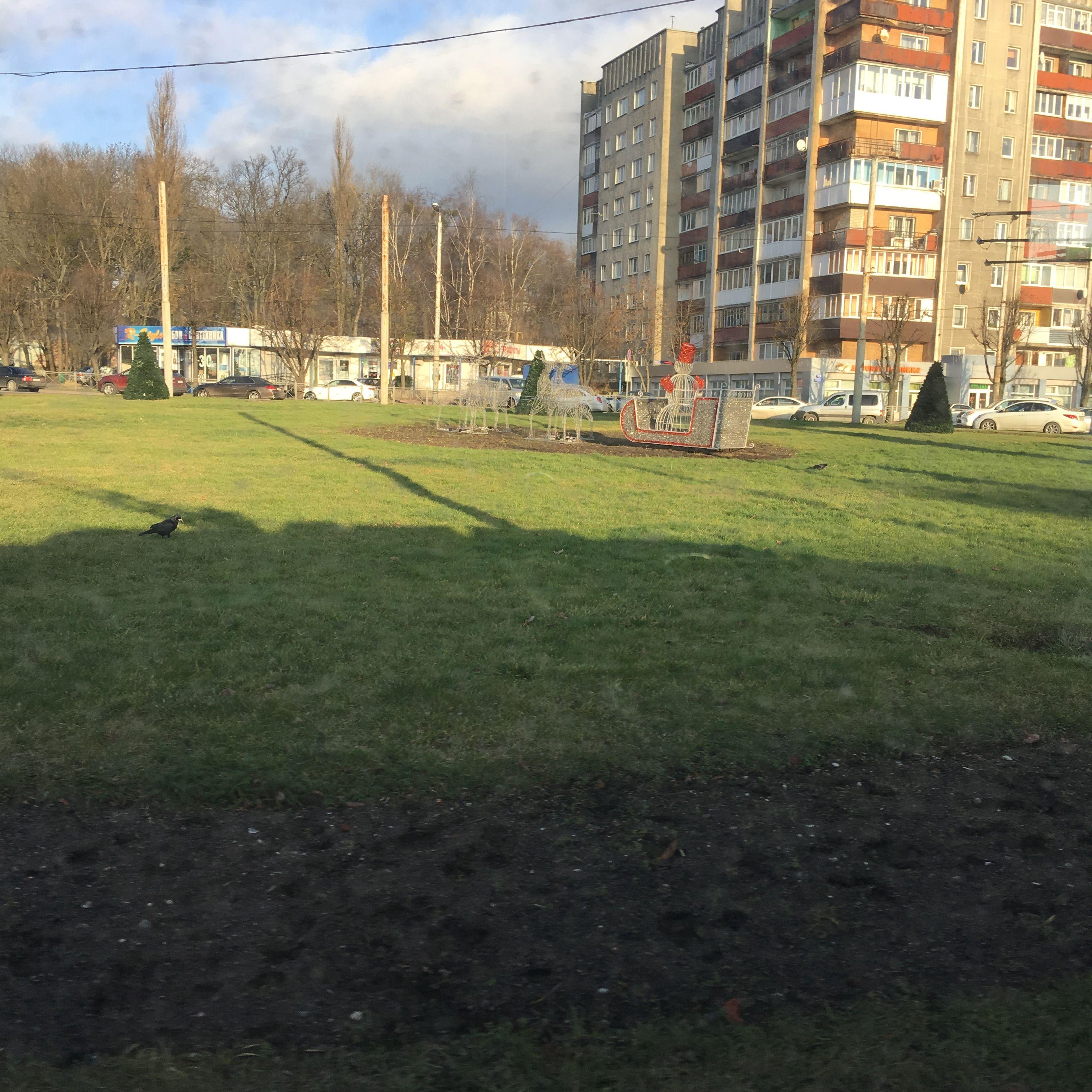 Начало зимы в Калининграде. Фото: Vladimir Shveda