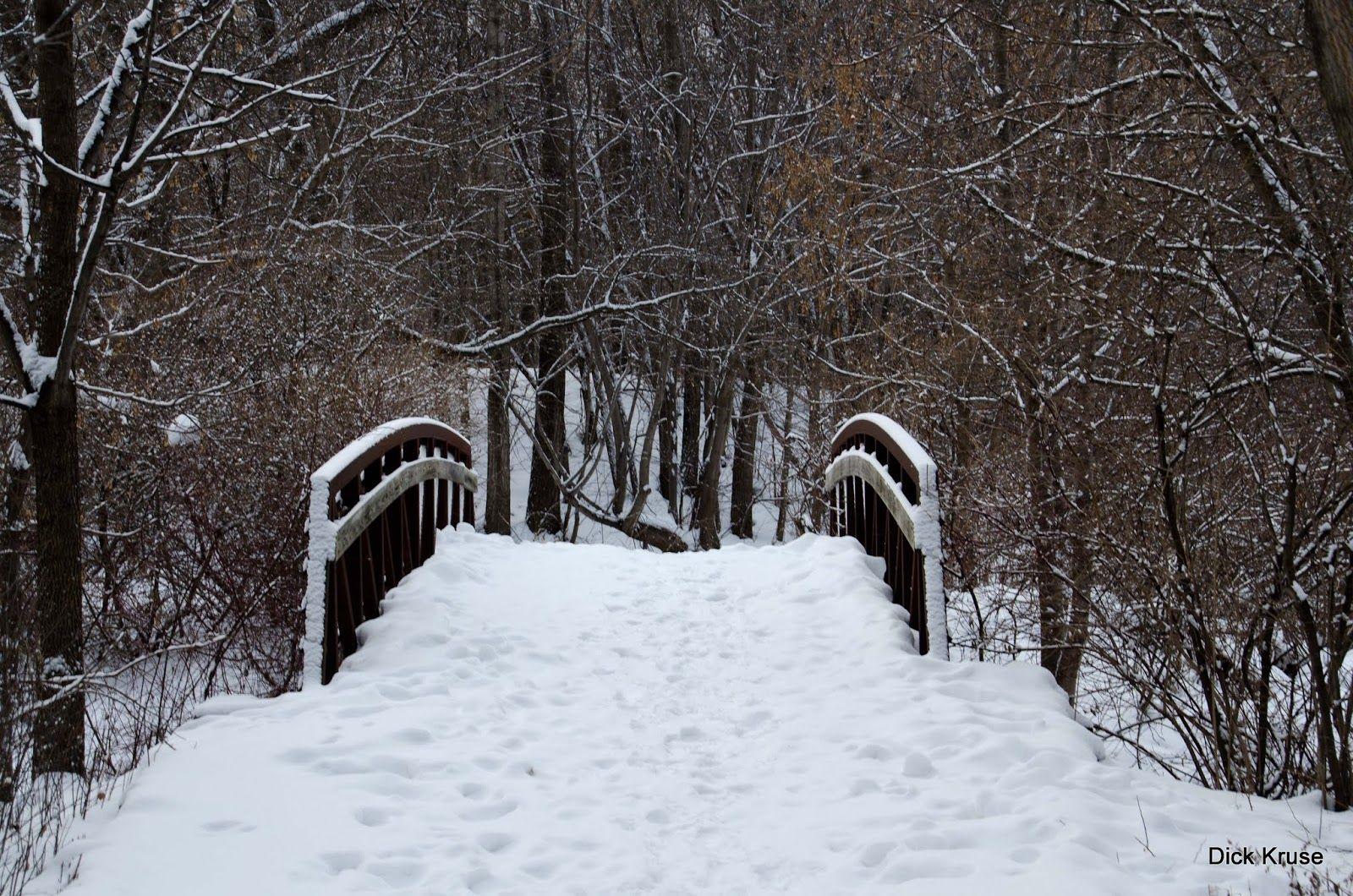 The Dick Kruse 365 Project: December 28, 2012 - Winter Walk
