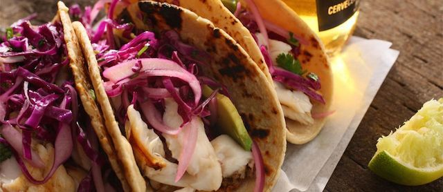 Blog: All You Need to Know About Fish Tacos #tacos #tacocatering #catering #fishtacos #rasta