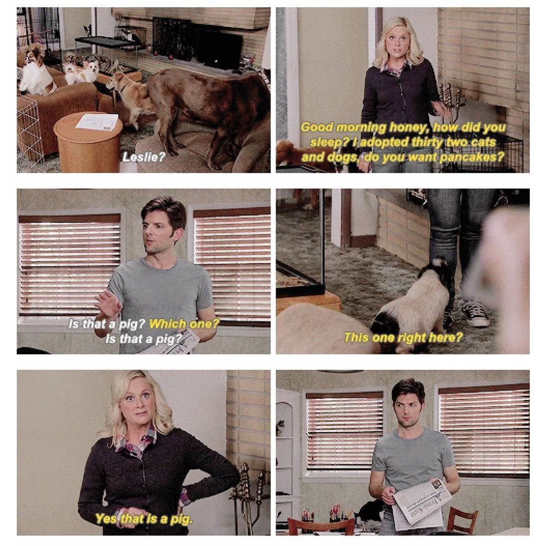 Parks and recreation meme dating