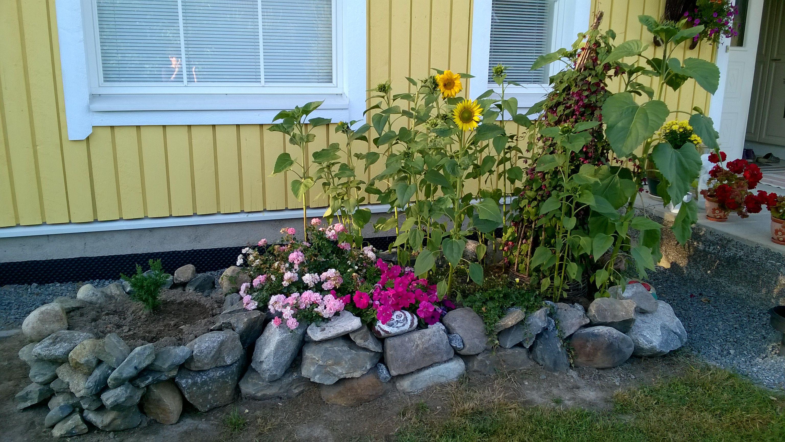 Kukkapenkki luonnonkivistä