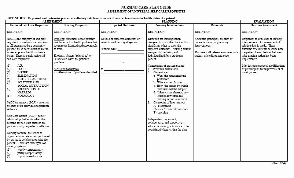 40 Patient Care Plan Template in 2020 (With images