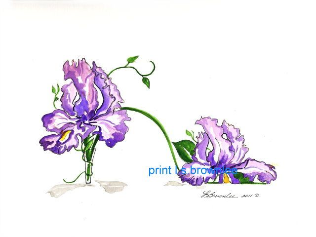 Original Iris in Glass Vase Shoe - SOLD but prints are available.