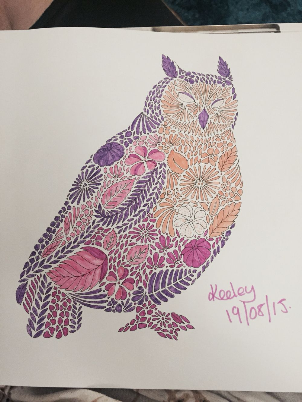 Animal kingdom coloring book gorilla - Owl From Millie Marotta S Animal Kingdom Colouring Book