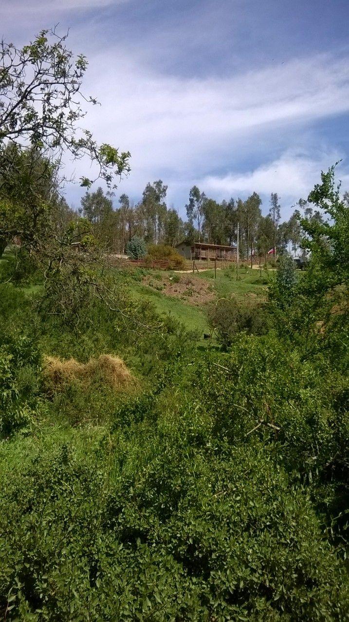 Comuna de Concon, sector Fuerte Aguayo. V región Chile.