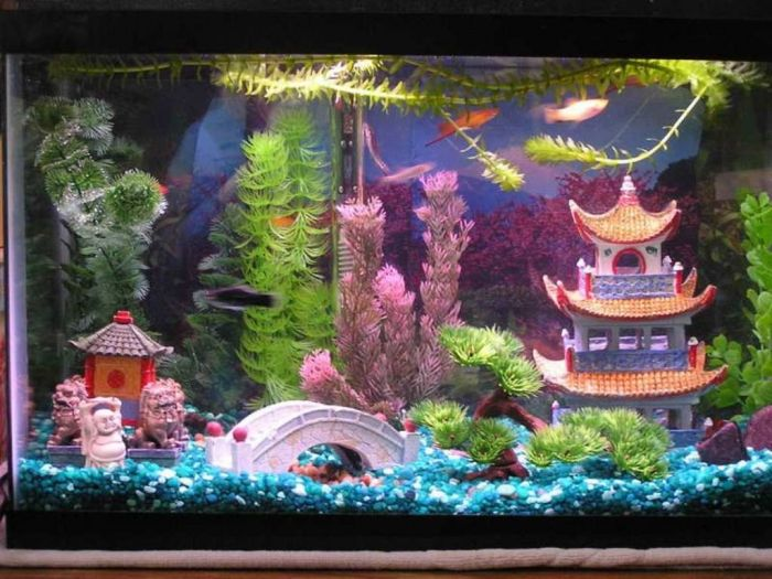 How To Decorate Your Boring Fish Tank Pouted Com Cool Fish Tanks Cool Fish Tank Decorations Fish Tank Themes