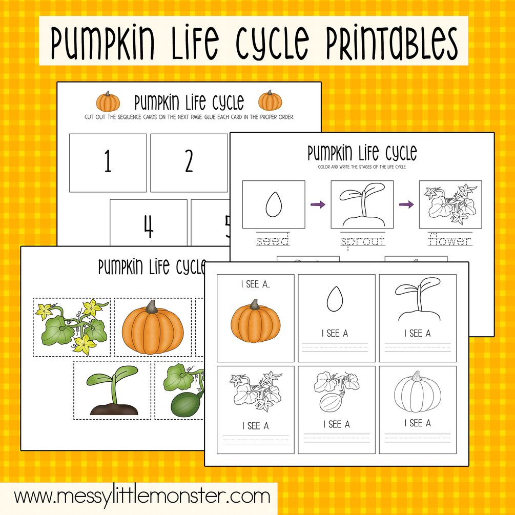 Fresh Ideas - Pumpkin Life Cycle (With images) Pumpkin life cycle