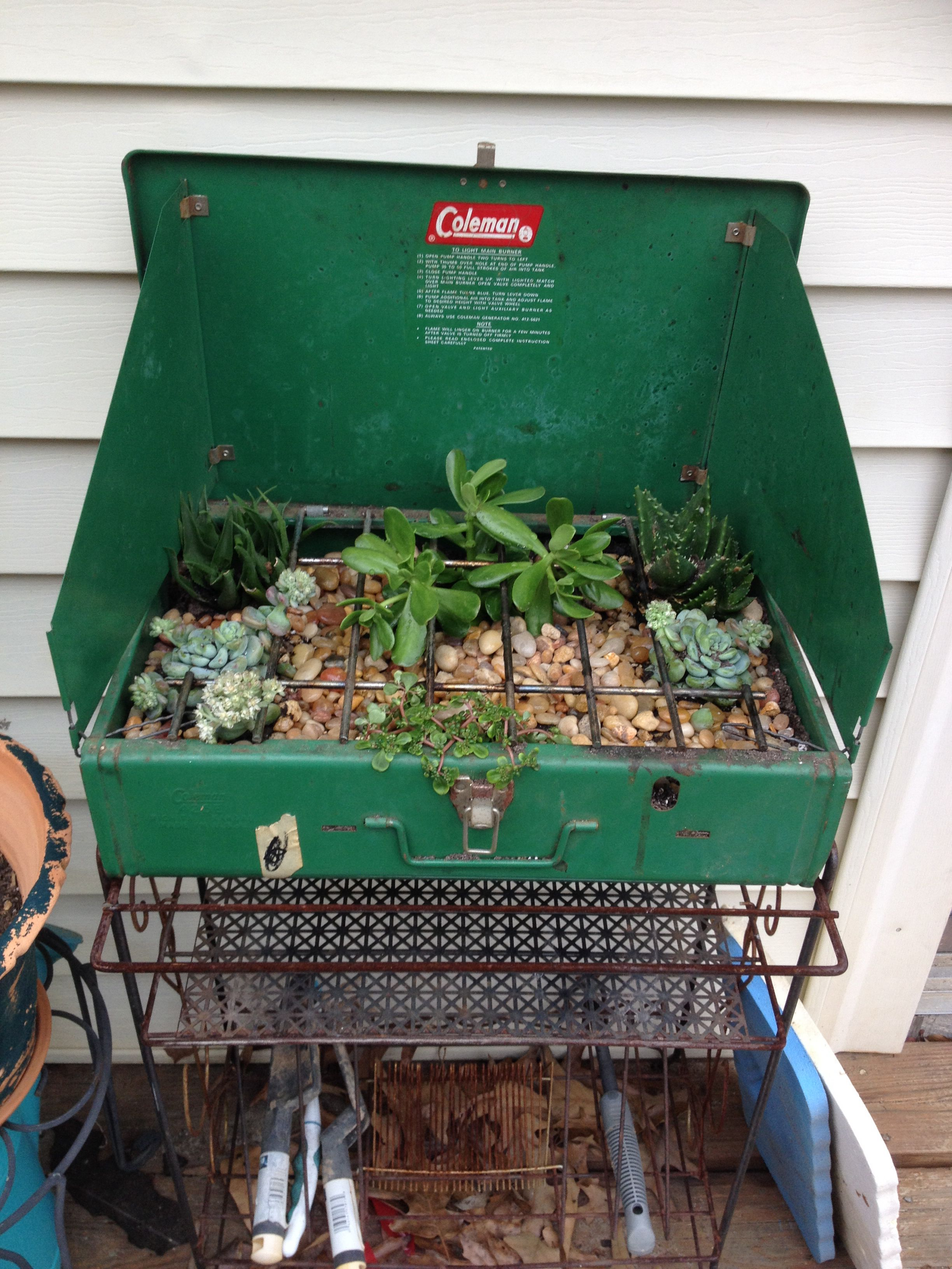 Coleman portable grill reused as a succulent planter