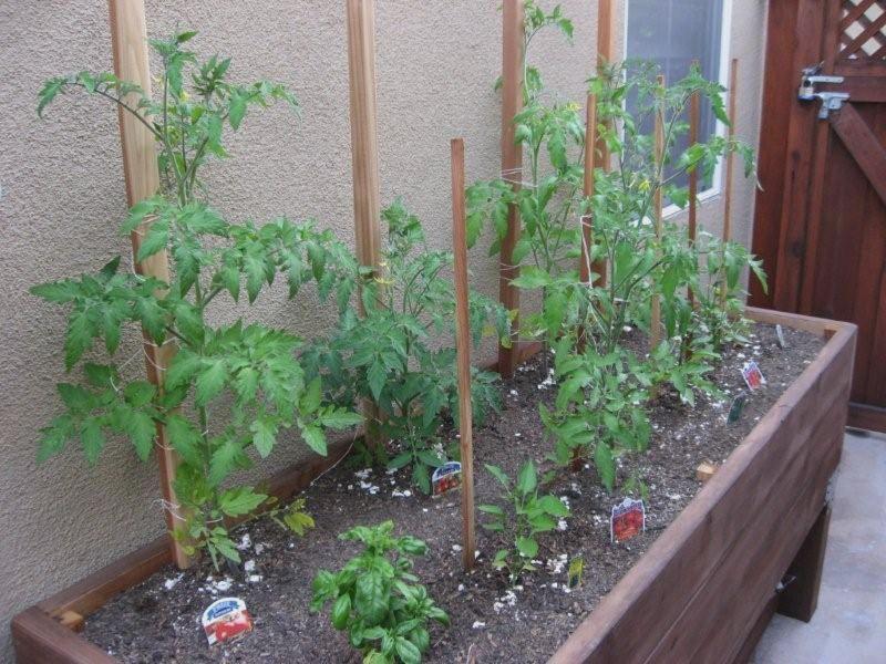 Vegetable Garden Box Designs - http://designphotos.xyz/06201619 ...
