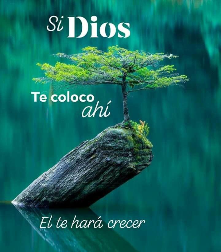 Pin De Edith Ruiz En Frases En 2020 Frases Cristianas Citas De Inspiración Español Frases De Bendiciones