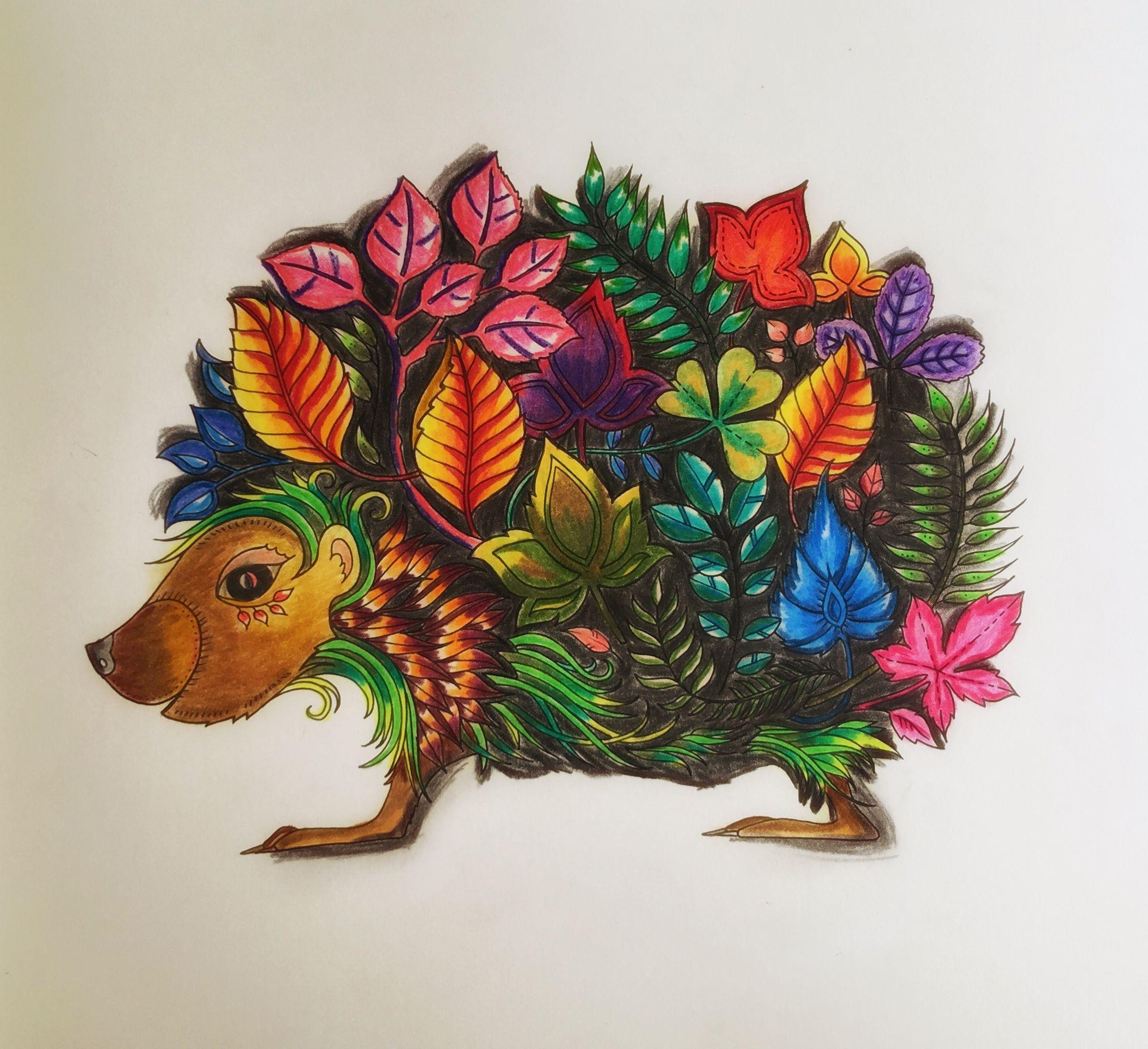 Enchanted forest (Johanna Basford) The Hedgehog Johanna