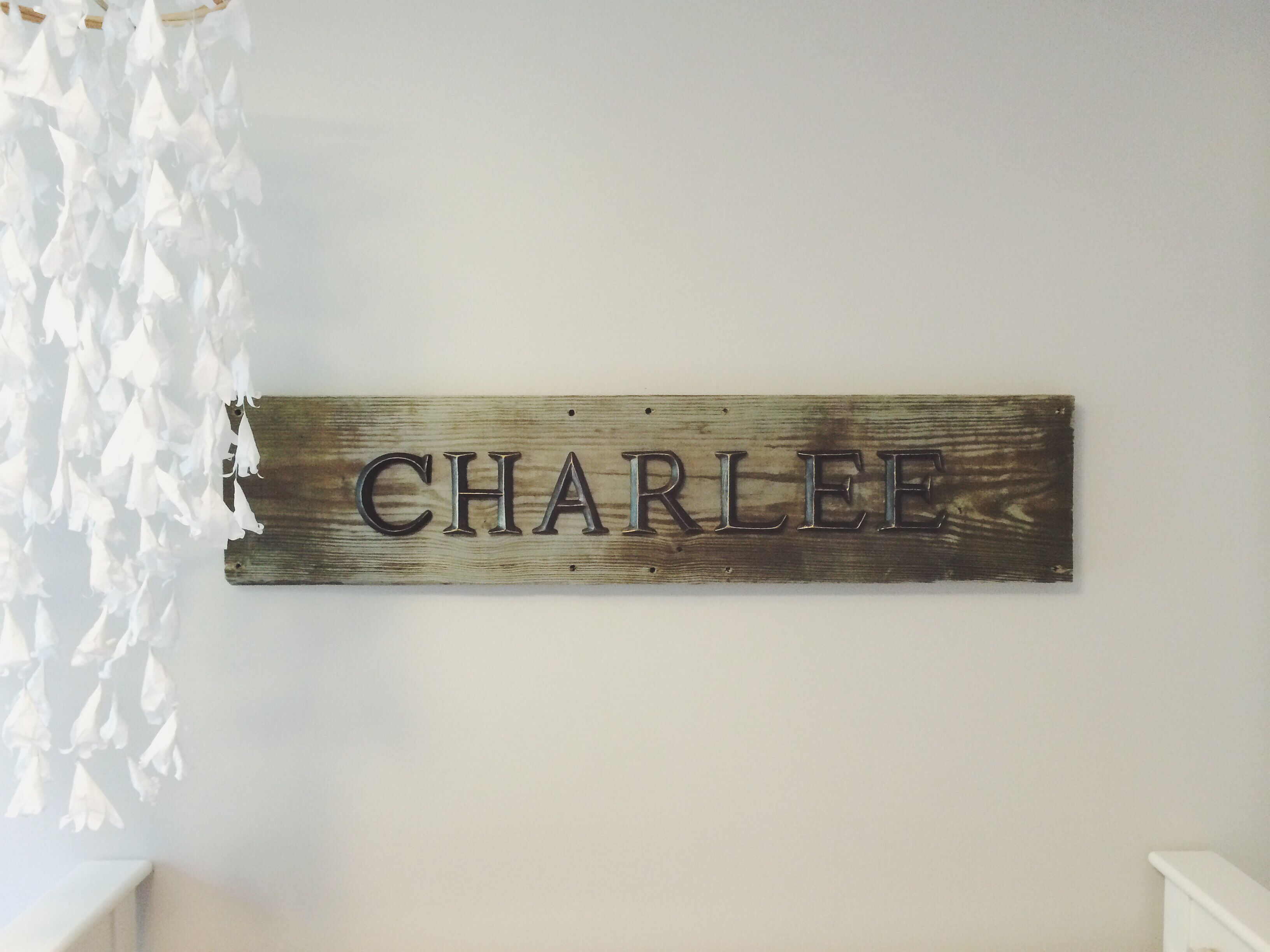 Charlee S Homemade Nursery Name Plate Plates Baby Names