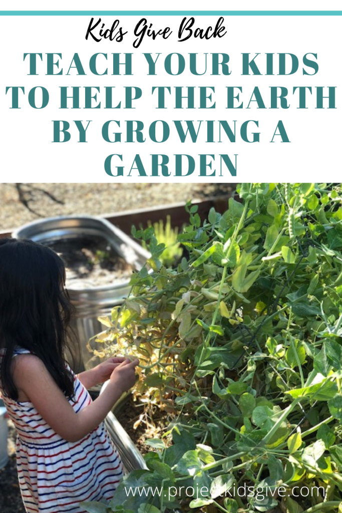 685e03e6c3a8e7c07029625cffd42f52 - How Does Gardening Help The Environment