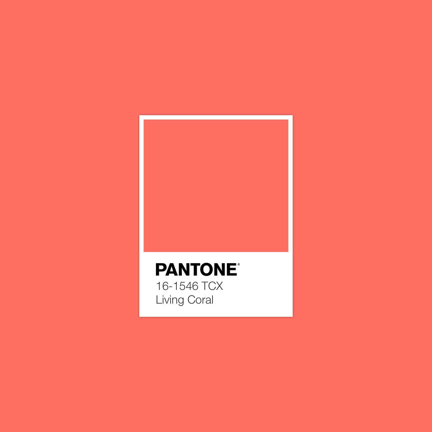 Pantone 2019 Living Coral Color Values: RGB 250 114 104