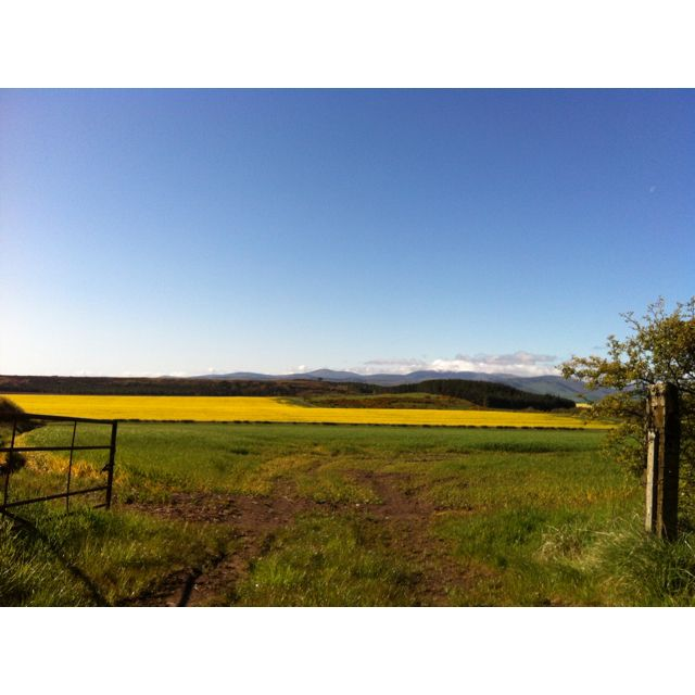 Northumberland with sun