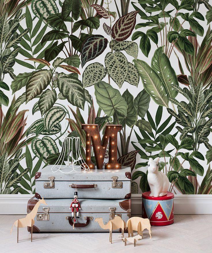 Mischievous Monkeys Pinterest Wallpaper and Room - moderne tapeten fr schlafzimmer