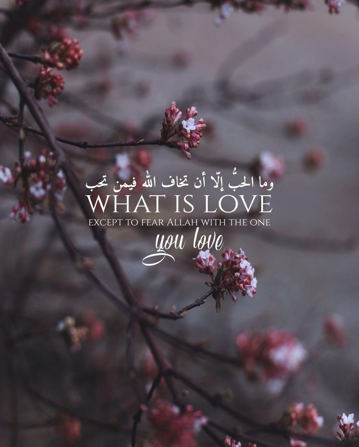 Pin By Yara Bassri On Quran Verses Islamic Quotes Quran Quotes Love Quran Quotes Love Scriptures