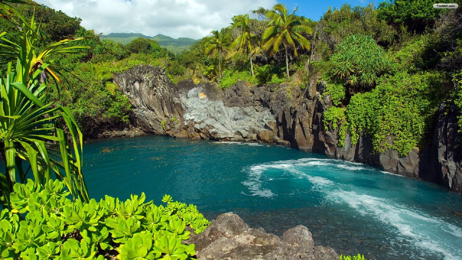 Tropical places tropical places youwall landscape for Tropical vacation places in the us