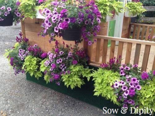 10 Window Box Planter Ideas - | Box design, Planters and Window