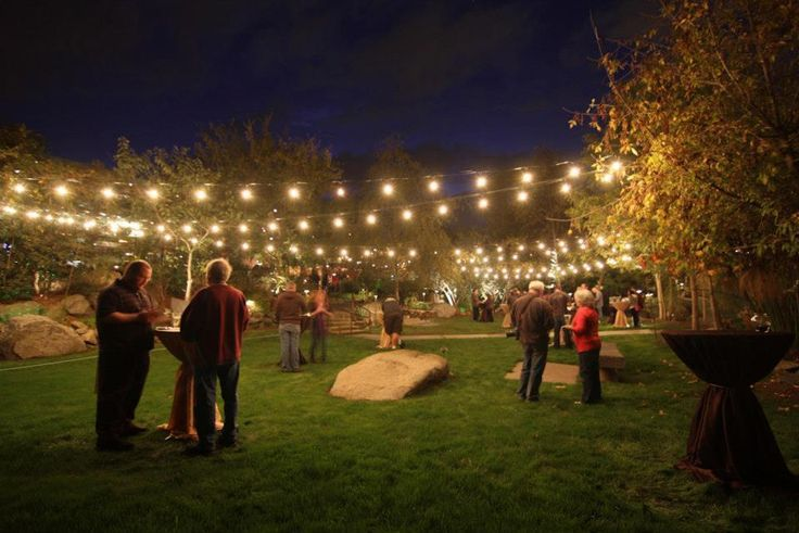 Bon Lawn Party. Backyard PartiesBackyard Party LightingBackyard ...