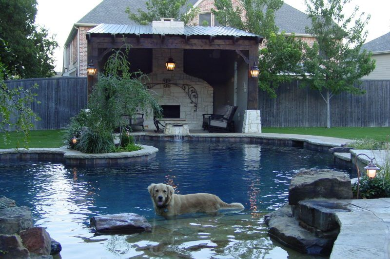 Hobert Pools Will Customize The Design Of Your Pool To Fit All Of Your  Familyu0027s Needs, Even Your Furry Family!
