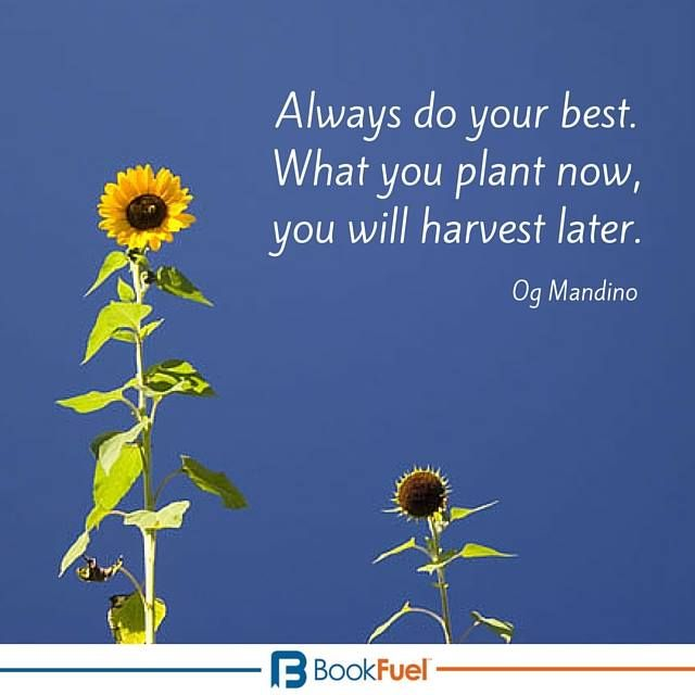 Always Do Your Best What You Plant Now You Will Harvest Later